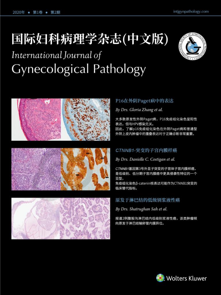 《国际妇科病理学杂志》第二期封面